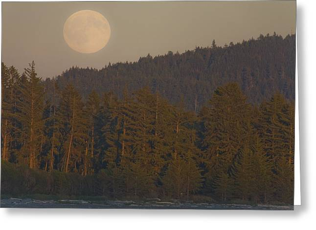 Moonrise At Sunset Along The Shores Greeting Card by Taylor S. Kennedy