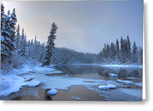 Morley River In Winter Near Teslin Greeting Card by Robert Postma