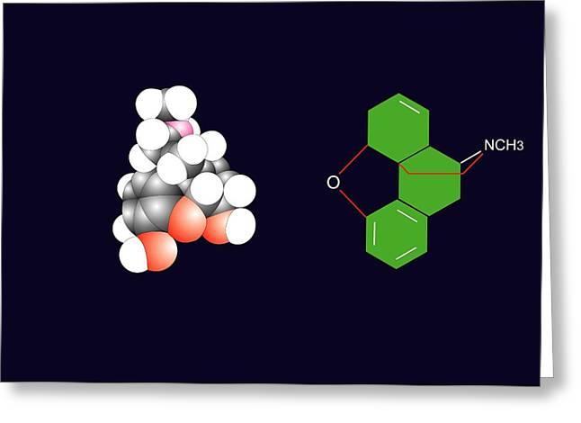 Morphine Molecule Greeting Card by Francis Leroy, Biocosmos