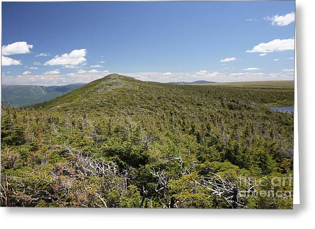 Mt. Albert, Quebec Greeting Card by Ted Kinsman