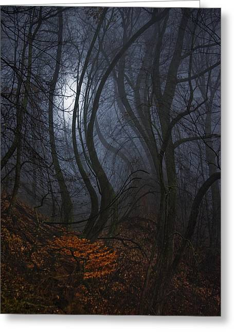 Night Walks Greeting Card by Ron Jones