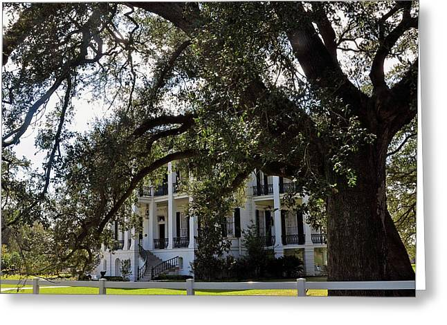 Greeting Card featuring the photograph Nottaway Plantation by Helen Haw