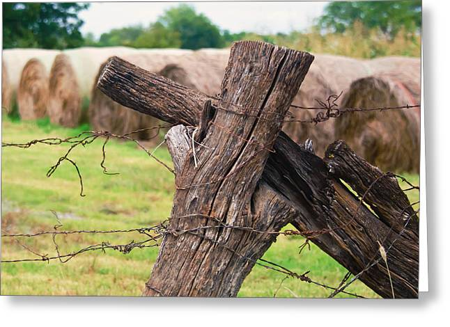 Old Cross Fence Greeting Card by Lisa Moore