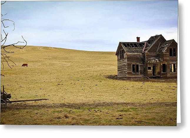Old Farmland Greeting Card by Steve McKinzie