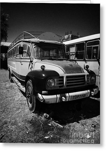 old traditional bedford bus coaches parked in Limassol lemesos republic of cyprus europe Greeting Card by Joe Fox