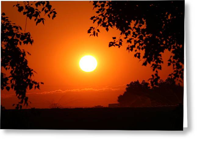 Greeting Card featuring the photograph Oregon Sunset by Jo Sheehan
