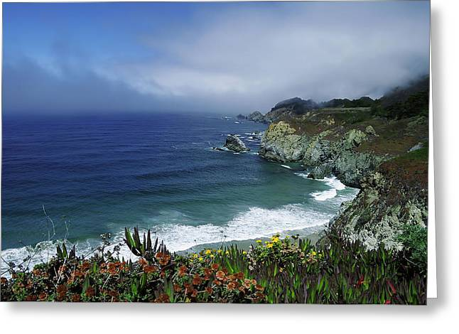 Greeting Card featuring the photograph Pacific Coast by Renee Hardison