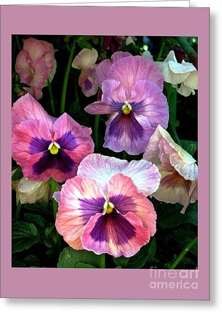 Pansies Greeting Card by Dale   Ford