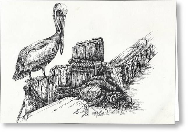 Pelican At Dockside Greeting Card