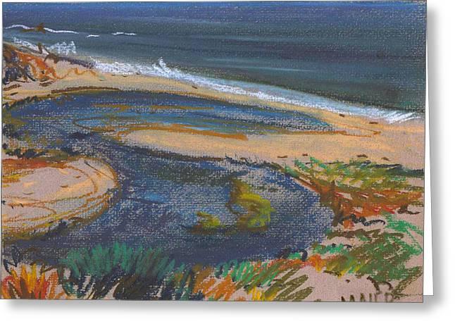 Pescadero Beach Greeting Card by Donald Maier