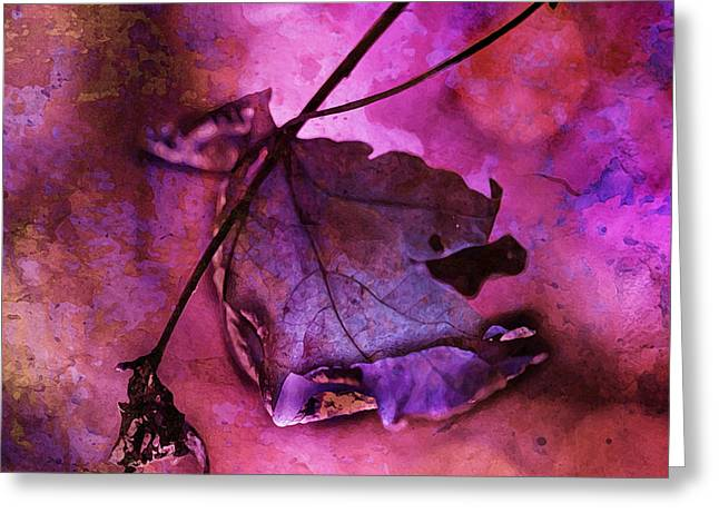 Love Hangs On Greeting Card by Bonnie Bruno