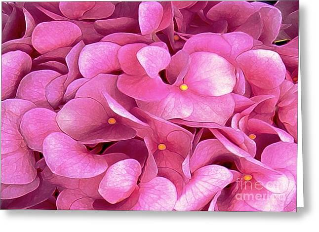 Pink Hydrangeas Greeting Card by Dale   Ford