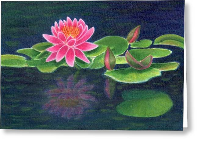Pink Lily Of The Pond Greeting Card