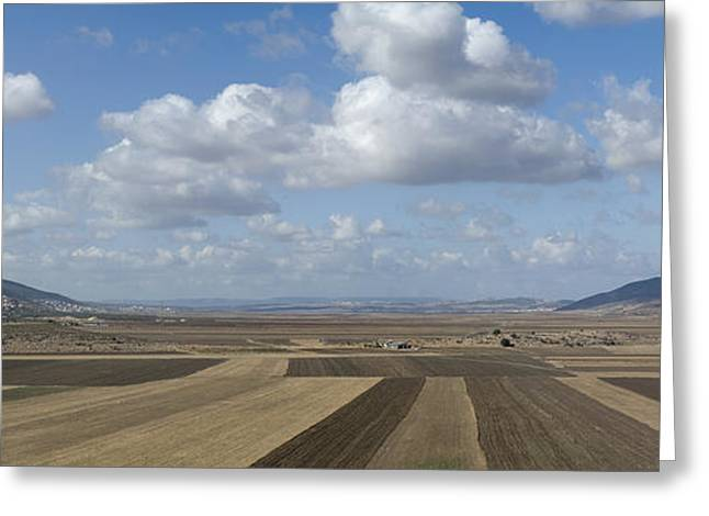 Plowed Agricultural Fields In The Beit Netofa Valley Greeting Card by Noam Armonn