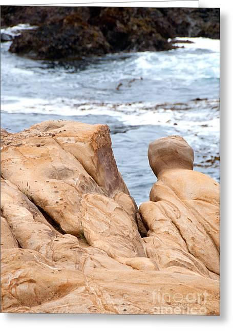 Point Lobos Park  Greeting Card by Carol Ailles