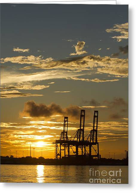 Port Of Charleston Sunset  Greeting Card by Dustin K Ryan