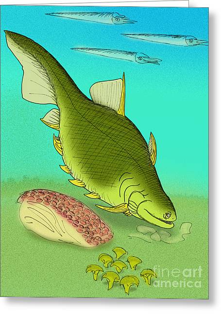 Ptomacanthus Anglicus Greeting Card by Stanton Fink