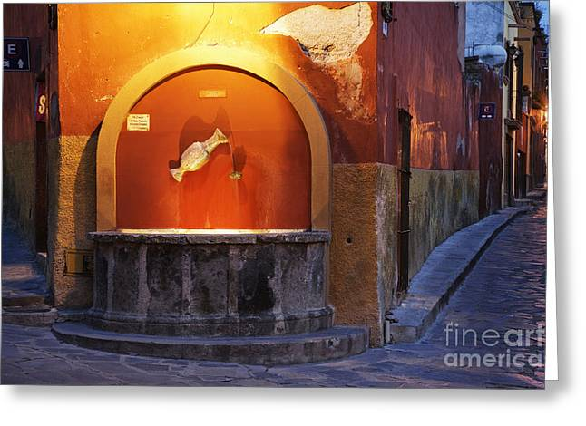 Public Fountain Greeting Card by Jeremy Woodhouse