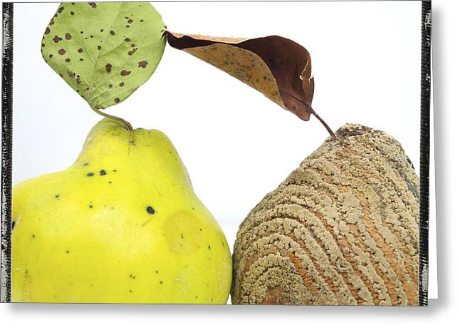 Quinces Greeting Card