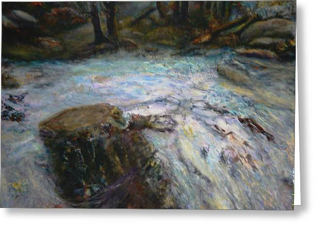 Raging River Greeting Card by Sylva Zalmanson