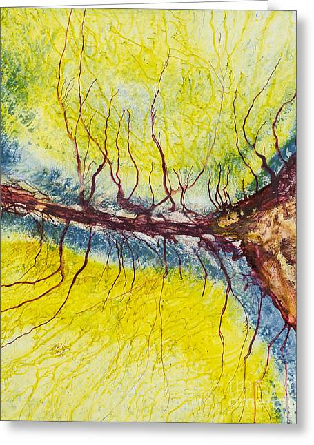 Raindrops To Rivers 15 Greeting Card by David W Coffin