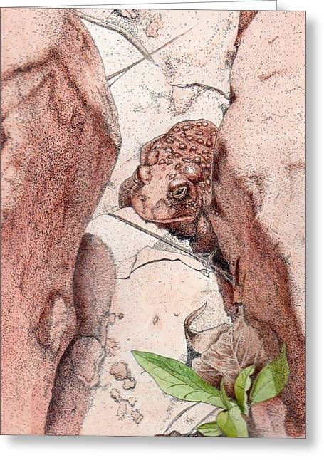 Red Spotted Toad Greeting Card