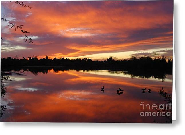 Greeting Card featuring the photograph Riparian Sunset by Tam Ryan