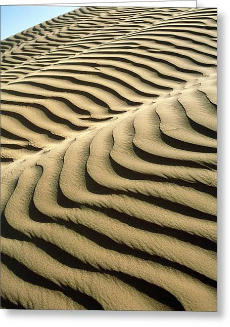 Rippled Sand Dunes Greeting Card by Tek Image