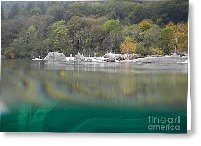 River With Trees Greeting Card by Mats Silvan