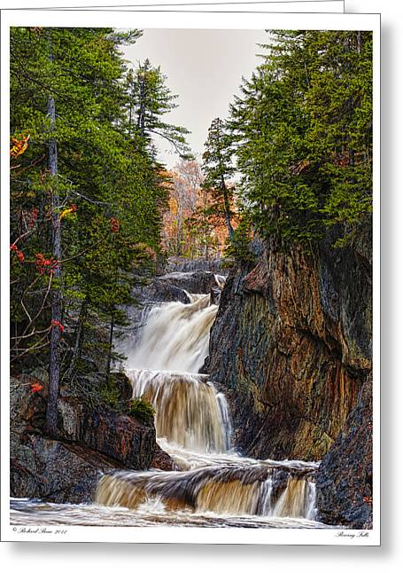 Greeting Card featuring the photograph Roaring Falls by Richard Bean
