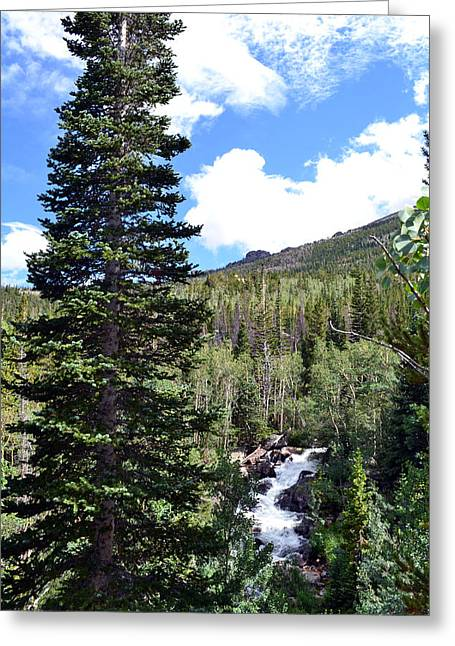 Rocky Mountain National Park2 Greeting Card