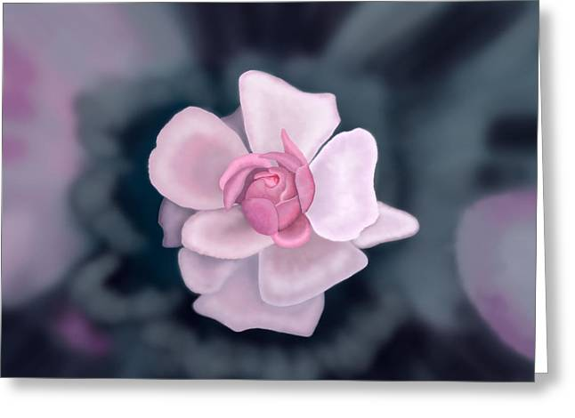 Rose Greeting Card by Tim Stringer