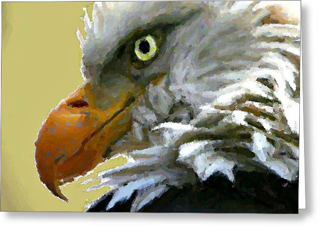 Eagle Eye Greeting Card by Carrie OBrien Sibley