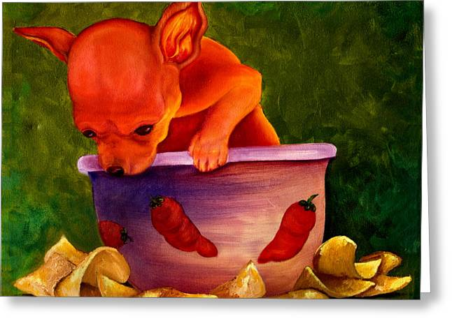 Salsa Chihuahua Greeting Card by Gail Mcfarland