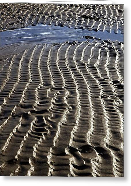 Sand Ripples At Low Tide Greeting Card by Dr Keith Wheeler