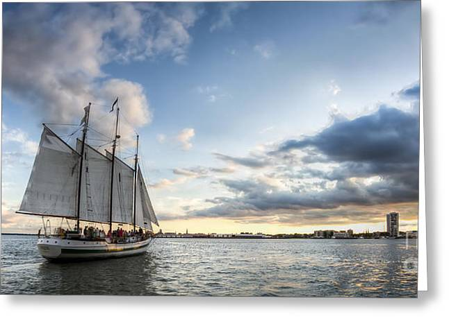 Schooner Pride Sunset Charleston Sc Greeting Card by Dustin K Ryan
