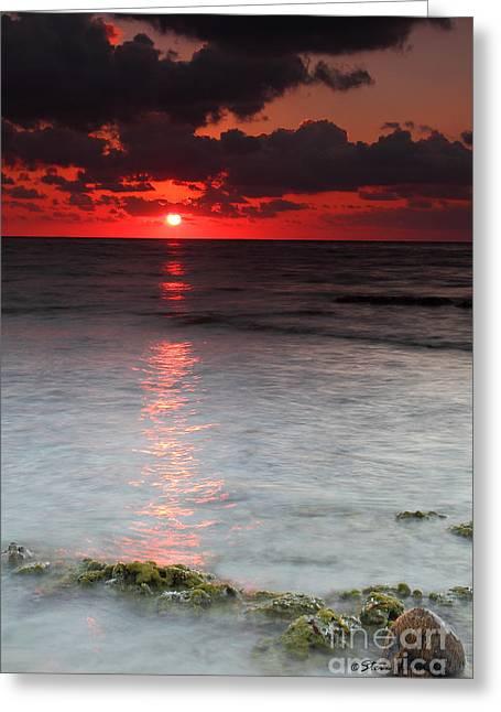 Sea Scape Sunrise Greeting Card