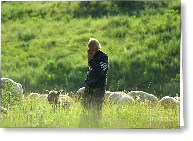 Shepherd Greeting Card
