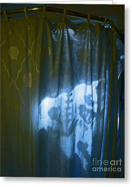 Shower Shadows Greeting Card by Beebe  Barksdale-Bruner