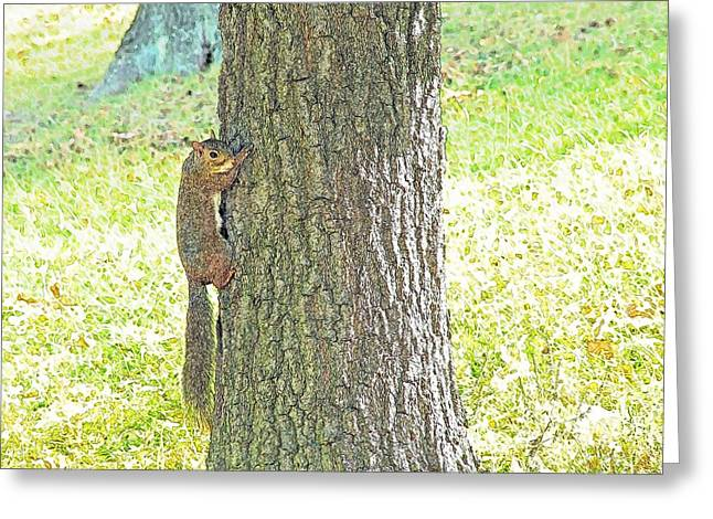 Smiling Squirrel Greeting Card by Joseph Hendrix