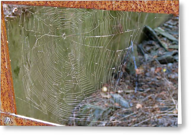 Spider Bridge Greeting Card
