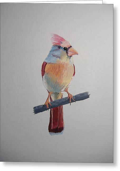 Spring Cardinal Greeting Card by Norm Starks
