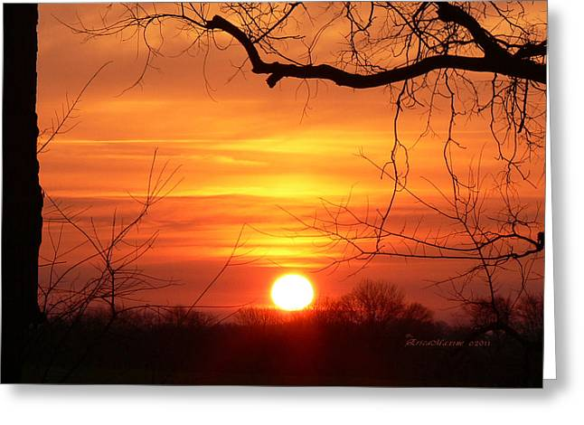 Sunrise In Tennessee Greeting Card by EricaMaxine  Price