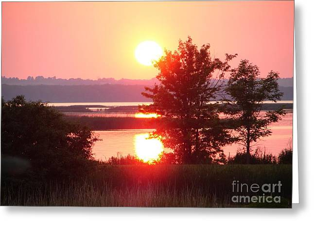 Sunset Ambience Greeting Card