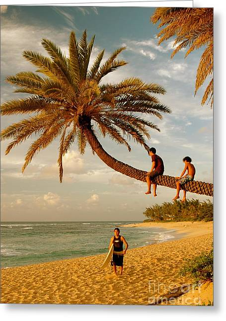 Sunset Beach Oahu Greeting Card