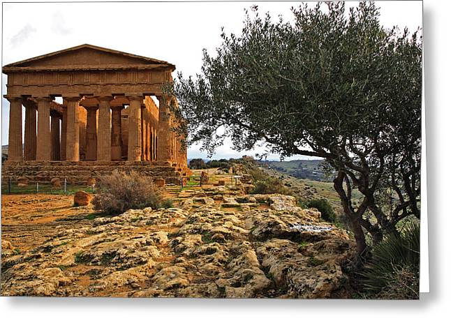 Temple Of Concordia Greeting Card by Steve Bisgrove