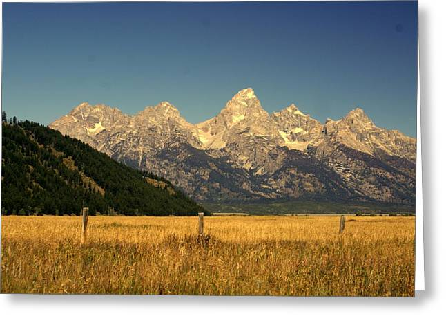Greeting Card featuring the photograph Tetons 3 by Marty Koch