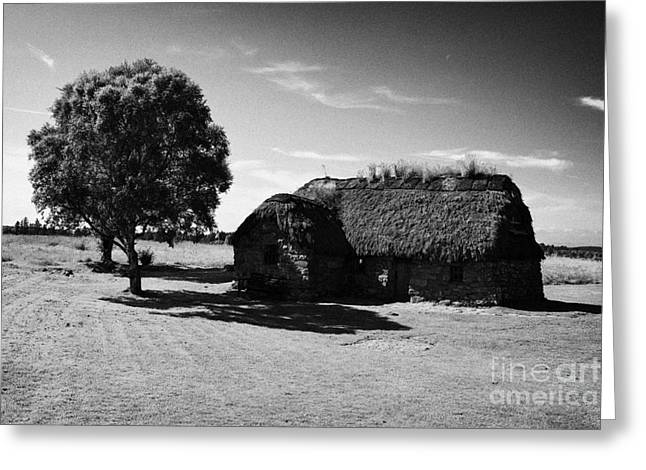 the old leanach cottage on Culloden moor battlefield site highlands scotland Greeting Card