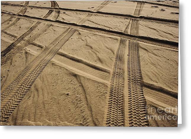 Tracks In . Sand Greeting Card by Sam Bloomberg-rissman