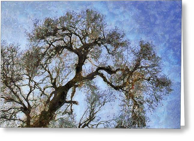 Tree Greeting Card by Algimantas Gavenauskas